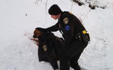 Ofiţerul de poliţie acoperă cu haina lui câinele lovit de maşină până la sosirea ajutoarelor