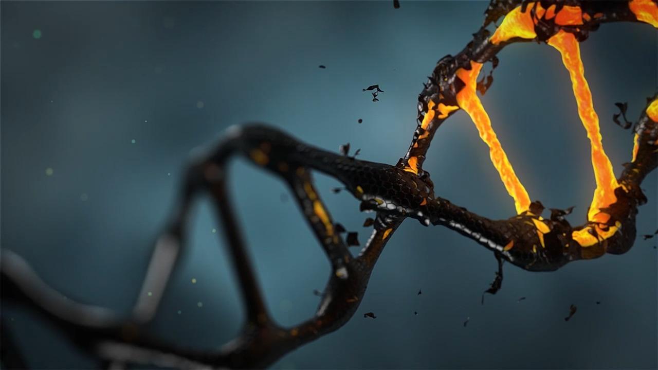 Prima dovadă a moleculelor de membrană celulară în spațiu