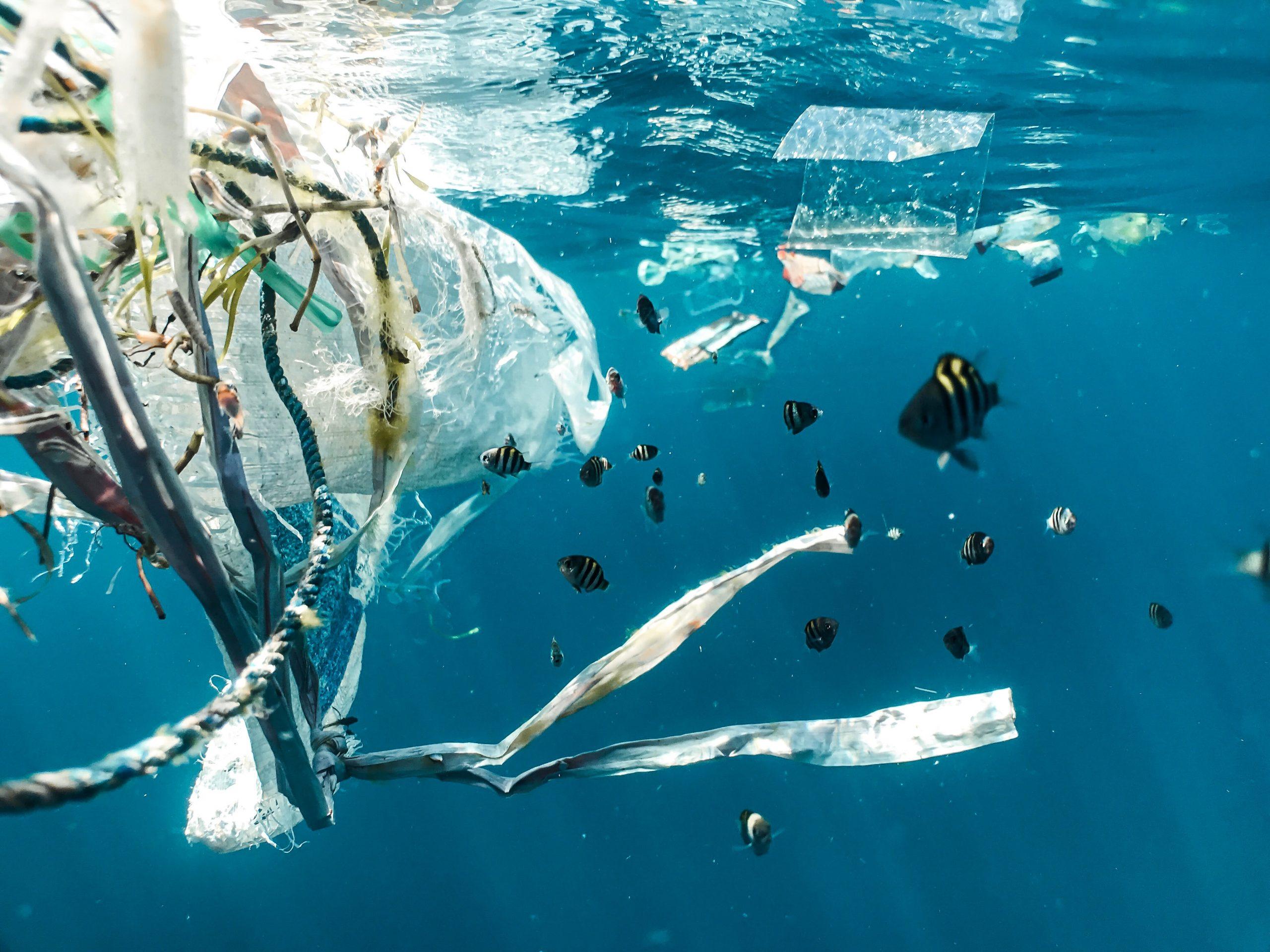 Guvernul a adoptat ordonanța anti-plastic. Ce produse din plastic vor fi interzise în România